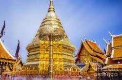 half-day-doi-suthep-and-temples-from-chiang-mai-in-chiang-mai-252610-feat