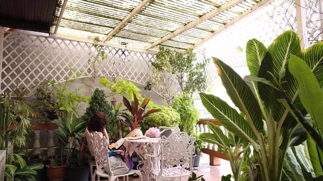 Thai Cozy Guesthouse Bangkok Garden