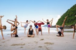 live yoga thailand