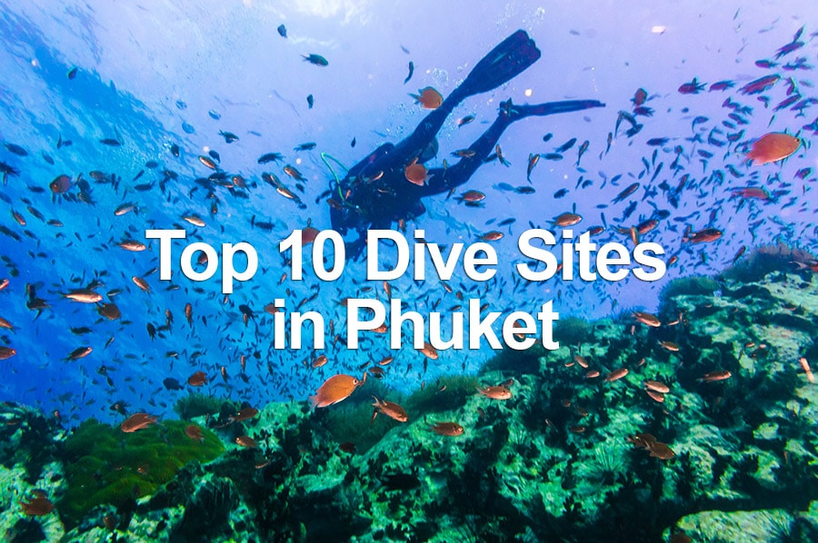 Top 10 dive sites in phuket thailand travel hub - Best dive trips ...