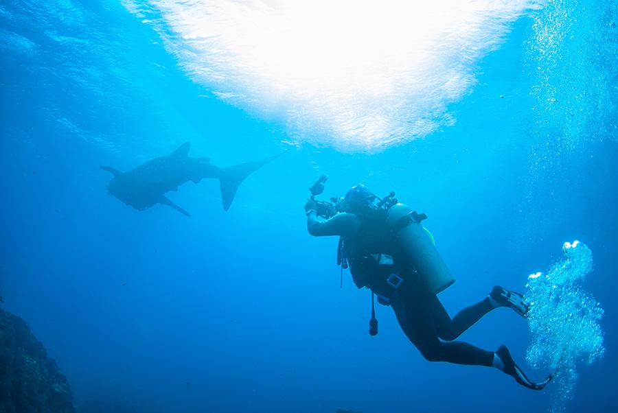 scuba-diving-andaman-sea