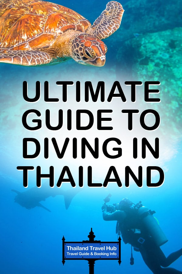Thailand Diving Guide