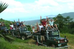 7-Hour 4WD Wild Jungle Safari Tour