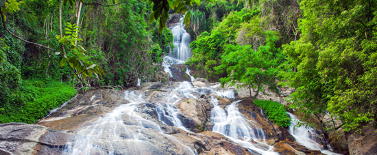 Jungles & Waterfalls In Koh Samui
